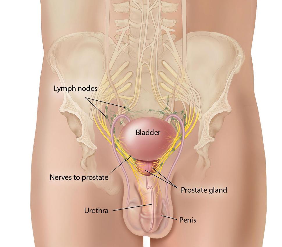 Adolescenta penetrata de un penis mare si tare