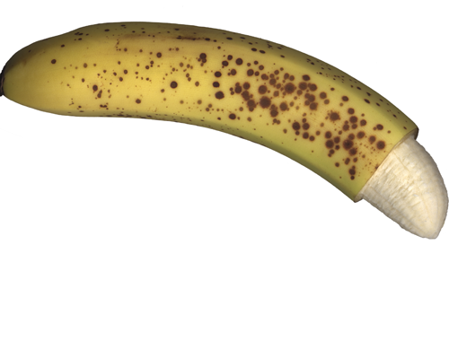 penisuri crestate