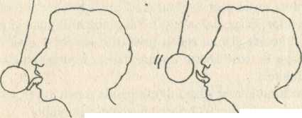 Figura - Ştiinţa misterioasă a amorului taoist