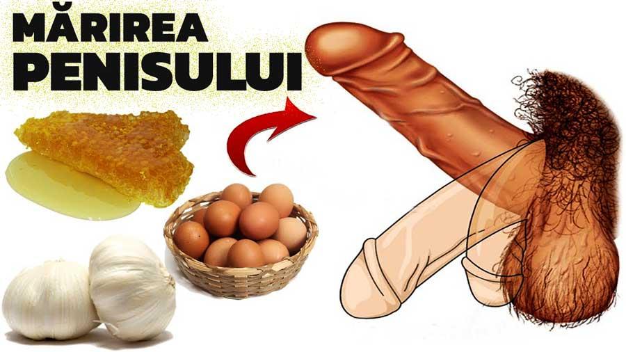 penisul nu crește în timpul erecției omul are nevoie de penis