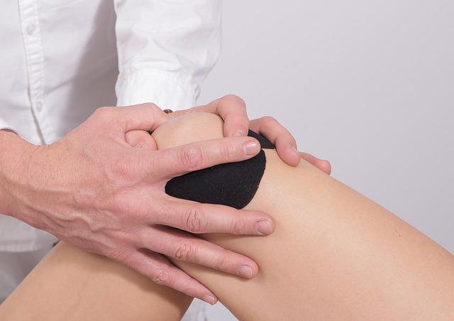penisul este mușchi sau cartilaj