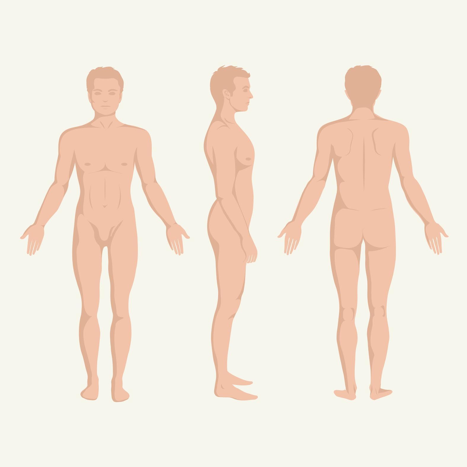 atașamentele penisului și cum se mărește penisul erecție și ejaculare