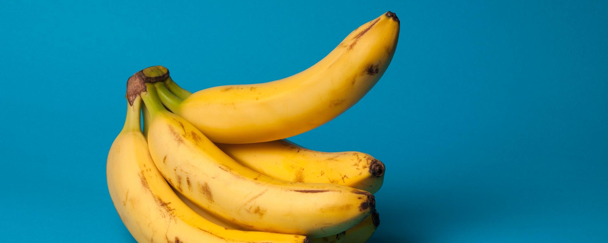 erecție și pasiune cum supt penisul