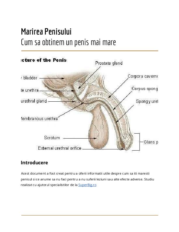 cum să mărești lungimea penisului prin antrenament
