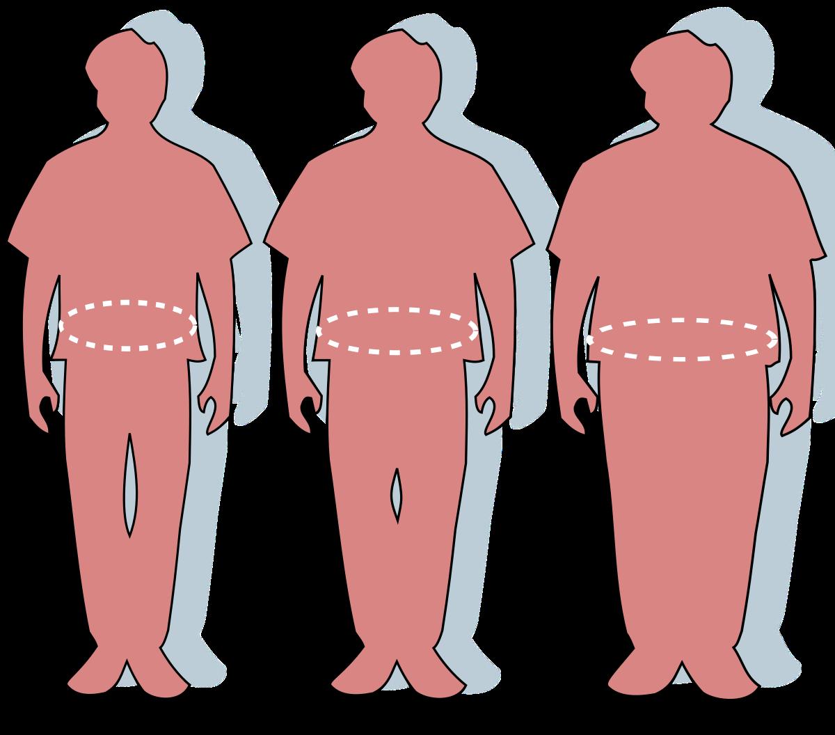 de ce supraponderalitatea are un penis mai mic amestec pentru o erecție bună