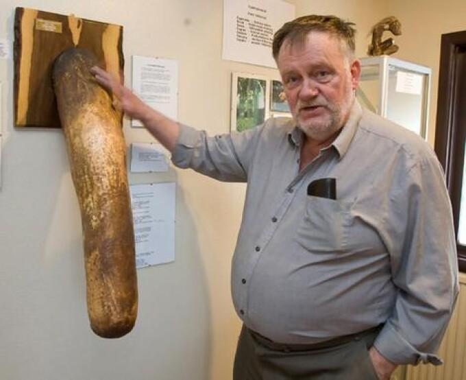 Muzeul de Penisuri din Islanda cauta donatori!