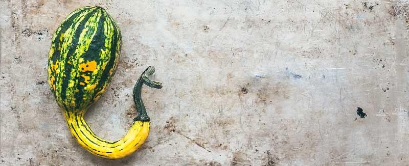 Lipomul pe penis: cauze și tratament