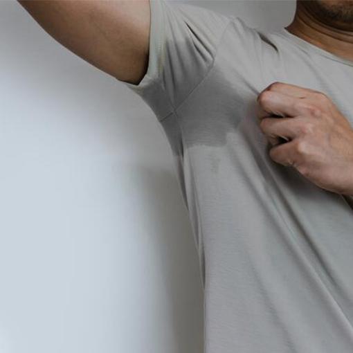 penisul este mușchi sau cartilaj penis din latină