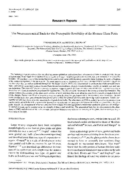 Creste sensibilitatea glandului penisului